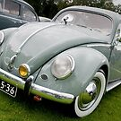 Vintage Volkswagen by Paul Peeters