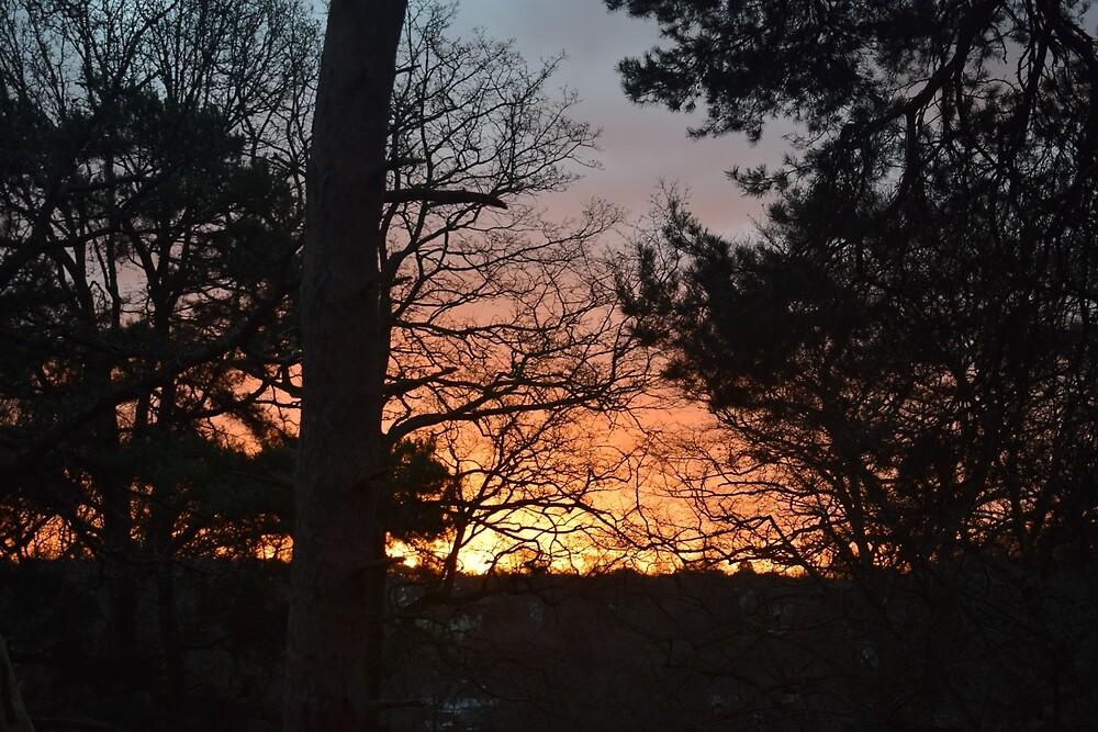 Winter Sunrise in Southampton by KR Green