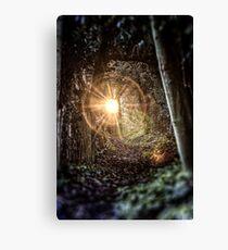 Magical Footpath Canvas Print