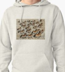 Cave Art Horses - Herd of Cheval Pullover Hoodie