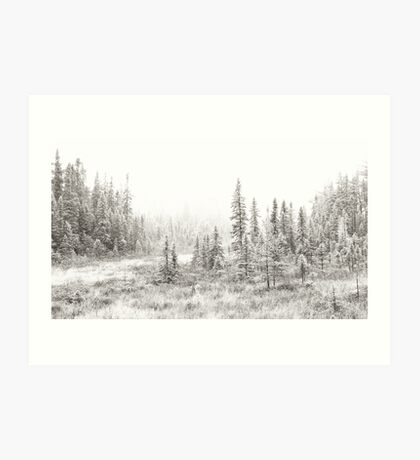 Algonquin Ice - Algonquin Park, Canada Art Print