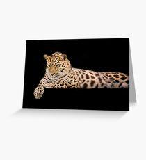 Wild Cats - Amur Leopard Greeting Card