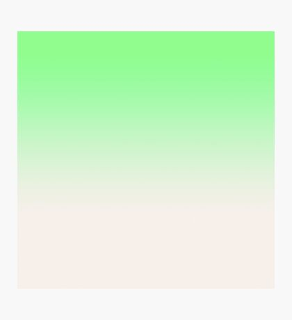 Ombre in Green by Julie Everhart Photographic Print
