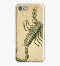 Scorpius Constellation, Zodiac Sign, 1825 iPhone Case/Skin