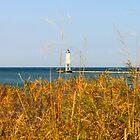 Frankfort North Breakwater Lighthouse by JoyFitzhorn