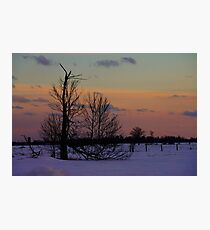 Winter sunset field  Photographic Print