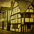 Queen Elizabeth 1 house, The Trinity, Worcester by Lissywitch