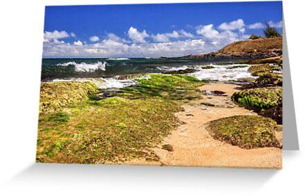 Ho'okipa Beach Maui by James Eddy