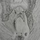 Gypsy Pegasus by louisegreen