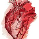 human heart by thedoodlejournal shop