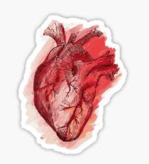 human heart Sticker