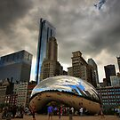 Chicago Bean by Barbara  Brown