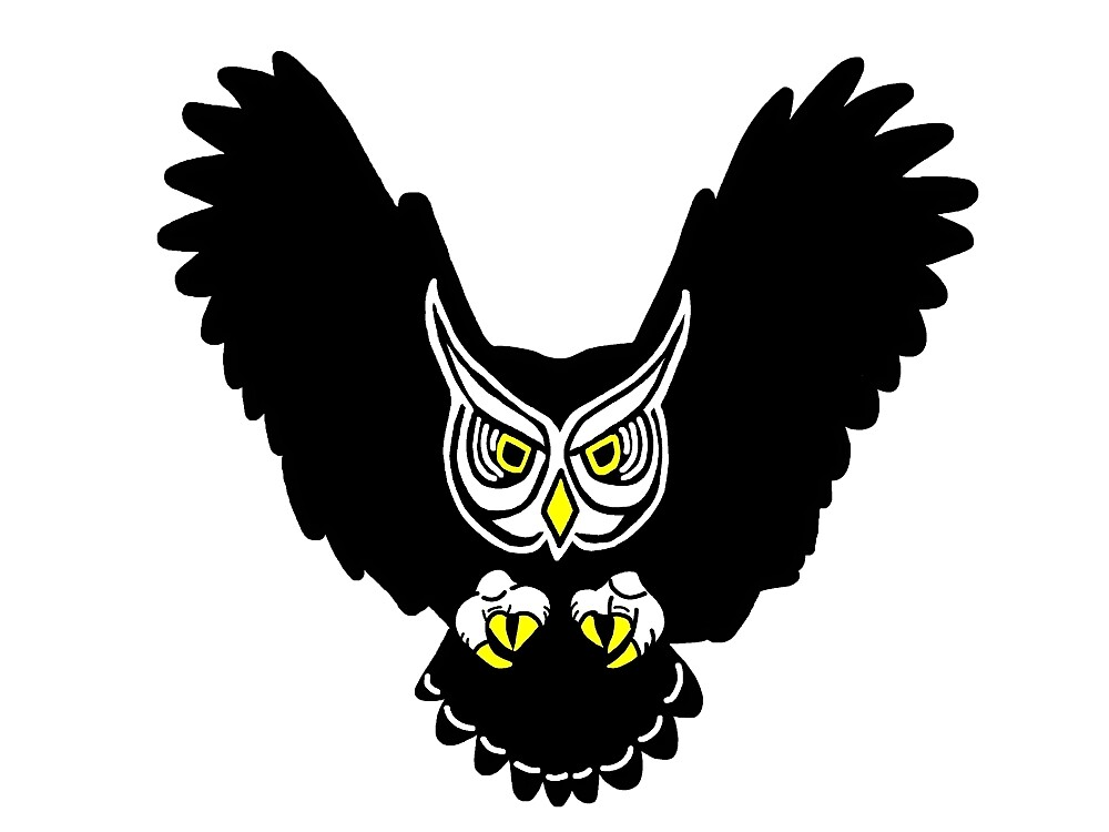 Swooping Owl by imphavok