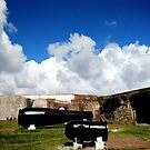 The Big Guns of Fort Sumter by meadaura