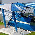 De Havilland TIGER MOTH by Bob Martin