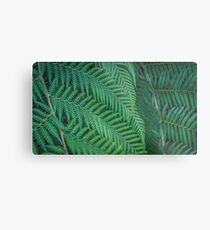 Tree Fern Symmetry Metal Print