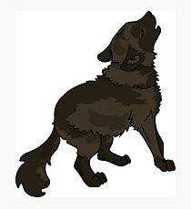 Shaggy Dog Dire Wolf Cub Puppy Photographic Print