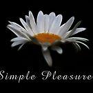Simple pleasures. by ikshvaku