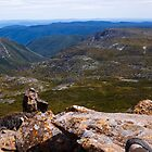 Absorbing the Moment - Cradle Mountain by Lexa Harpell