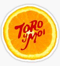 Toro y Moi Sticker