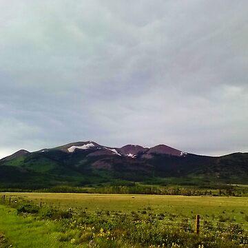 Kenosha Pass  Fairplay, Colorado Mountain Adventure by rickitywrecked
