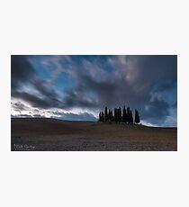 cipressi Photographic Print