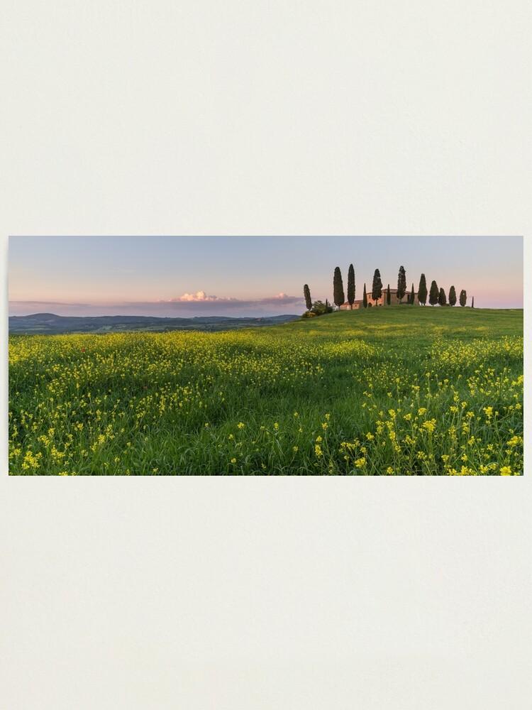 Alternate view of farmhouse pienza Photographic Print