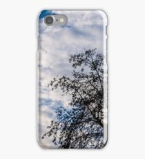 In that quiet Earth - At sunset iPhone Case/Skin