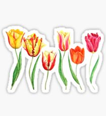 colorful tulips  Sticker