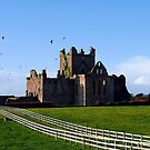 Dunbrody Abbey, County Wexford, Ireland by David Carton