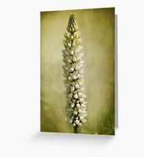 Flower fair Greeting Card