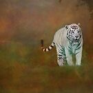 W is for......White Tiger by Lissywitch
