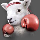 BOXING LAMB by MEDIACORPSE