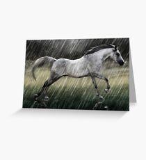 Grey In Rain Greeting Card