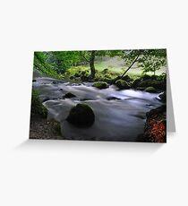 Golitha Falls, Cornwall Greeting Card