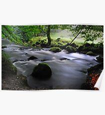 Golitha Falls, Cornwall Poster