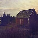 Wandering in Nova Scotia by OLIVIA JOY STCLAIRE
