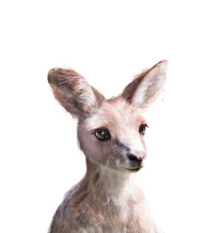 Little Kangaroo Sticker