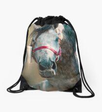 Scratching Post Drawstring Bag