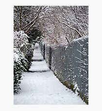 Almost Narnia! Photographic Print