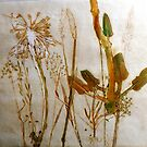 "Mornington Peninsula Grasslands 2 by Belinda ""BillyLee"" NYE (Printmaker)"