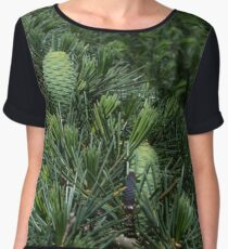 Emerald Cones Women's Chiffon Top