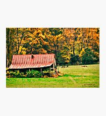Red Barn and Deer on Blue Ridge Parkway Photographic Print