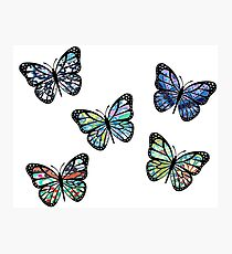 Cute Patterned, Flying Butterflies Pack of 5 Photographic Print