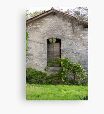 old house and door Canvas Print