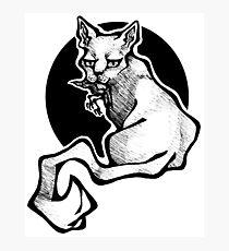 Murder Cat Photographic Print