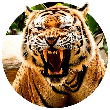 Bengal Tiger Roar by onibug