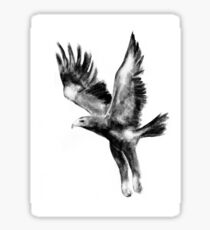 Tasmanian Wedge Tailed Eagle Sticker