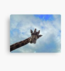 Yo! You down there! Canvas Print