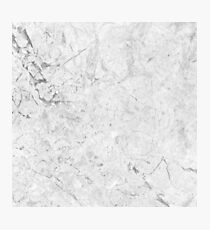 Gray Marble Crackle Photographic Print
